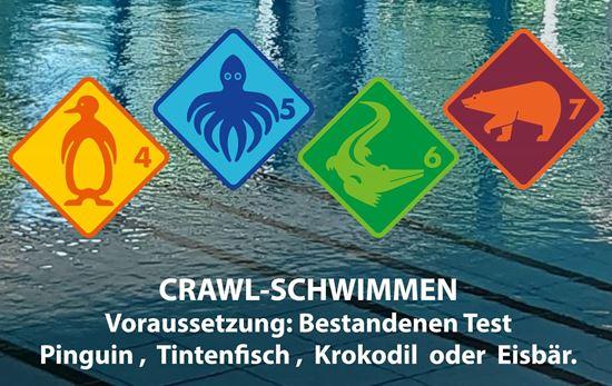 Bild von Ferien-Schwimmkurs Crawl